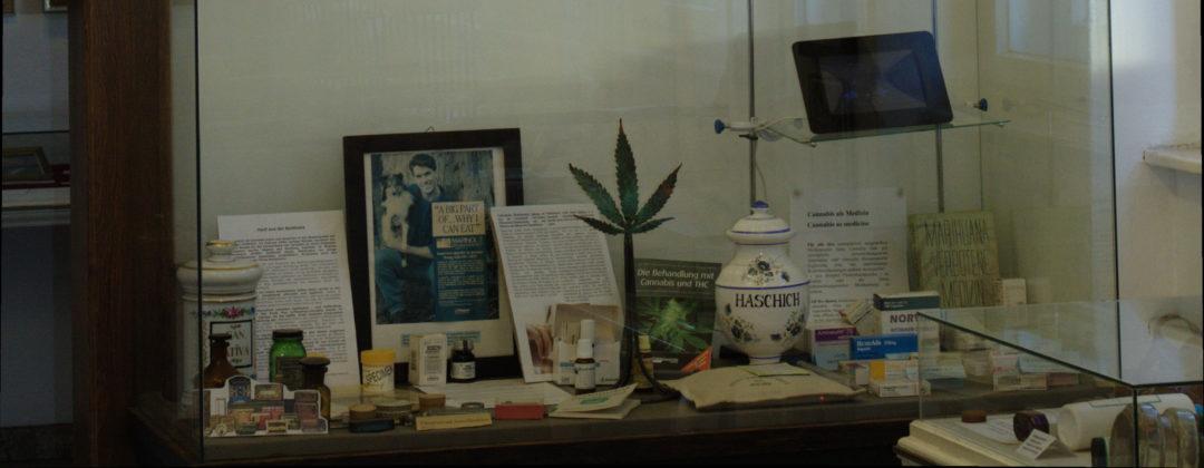 Cannabis in der Medizin / Cannabis in medicine