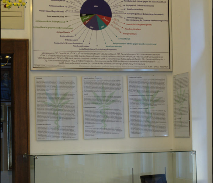 Cannabis in der Medizin / Cannabis in medicine