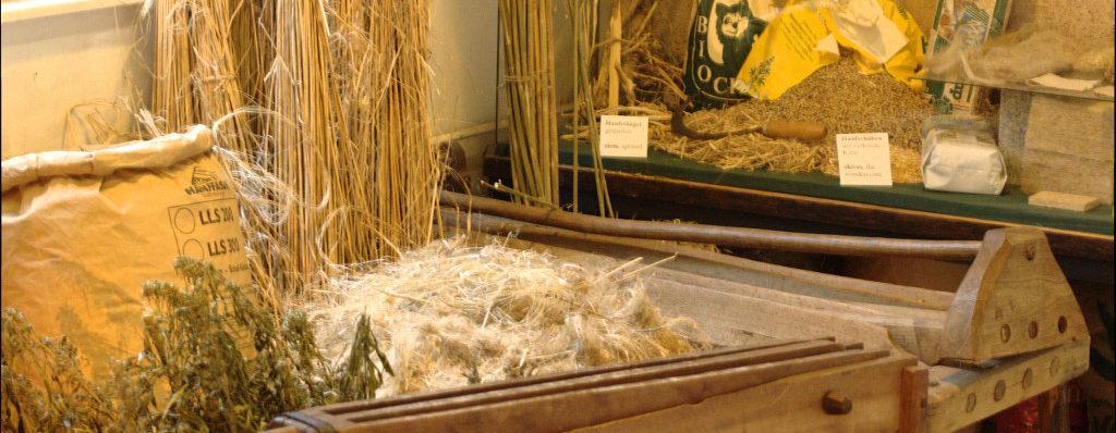 Hanf Brechen für Fasern / Breaking the hemp for fibres