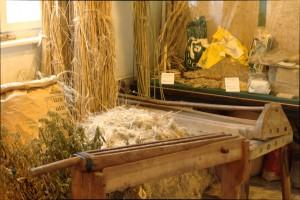Hanfpflanzen, Hanf brechen und Hanffasern